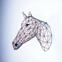 Brown Horse by Alter Ego