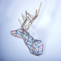 Multicolor Deer By Alter Ego