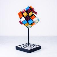 Rubik nella vita by Alter Ego 1